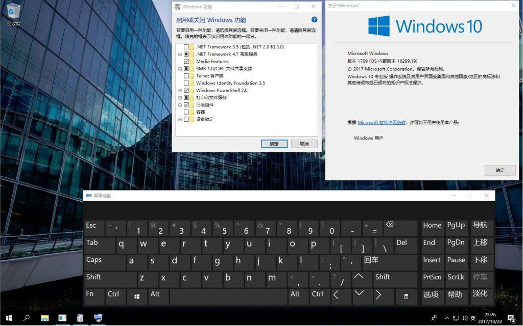 俄国老Windows 10 1709 Pro 16299.19 rs3 x86-x64 ZH-CN 合集